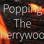 FanboysInc's Popping the Cherrywood Ep 46 YOUNG SHERLOCK HOLMES & YOUNG EINSTEIN